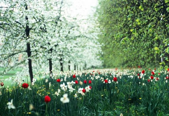 Весенний сезон объявляется открытым!