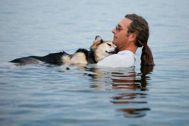 20фотографий, доказывающих, что нет никого преданнее собаки