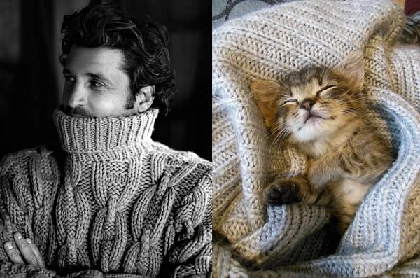 Котята против парней - выбирай, кто милей :))