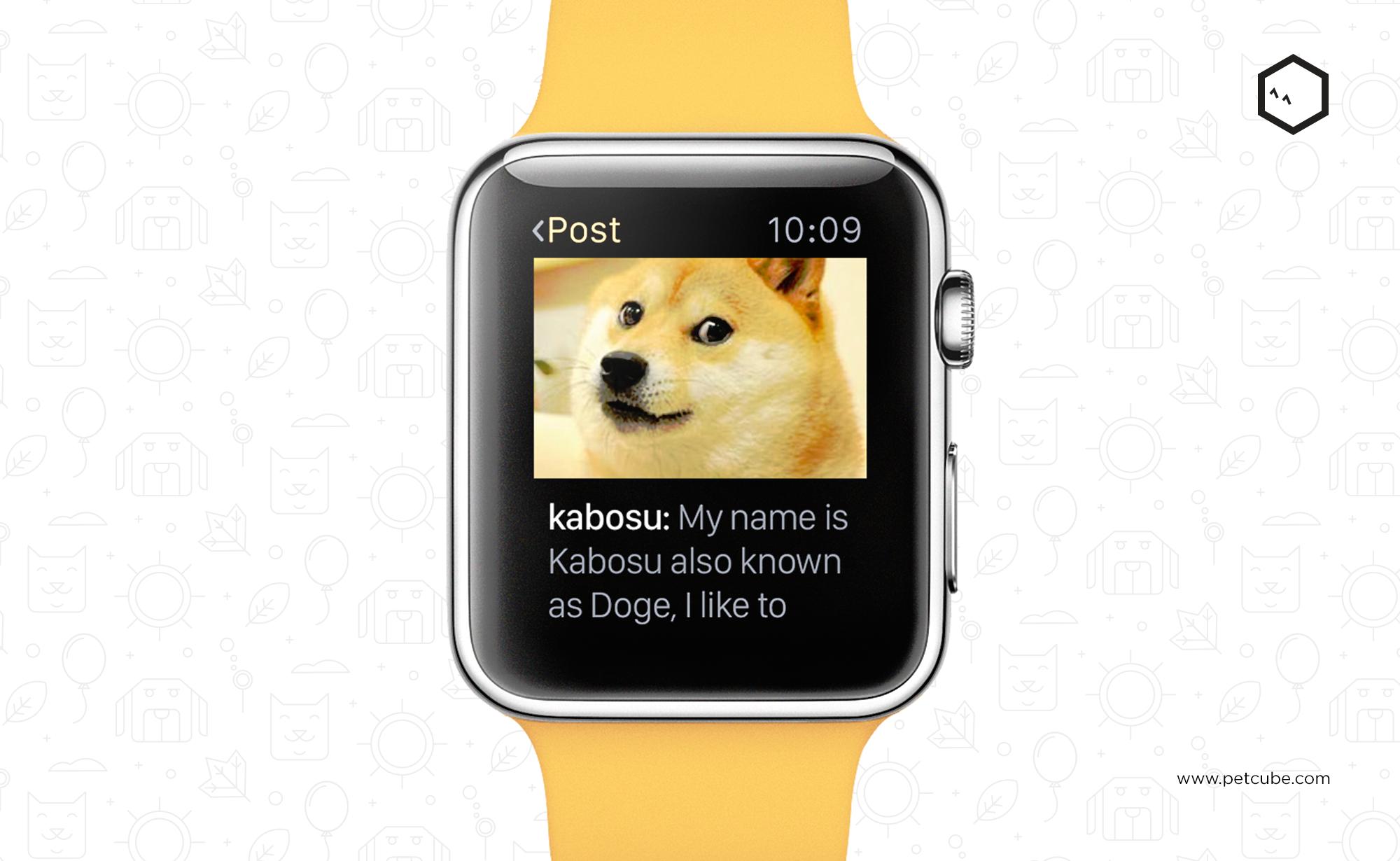 Petcube выпустил приложение для Apple Watch