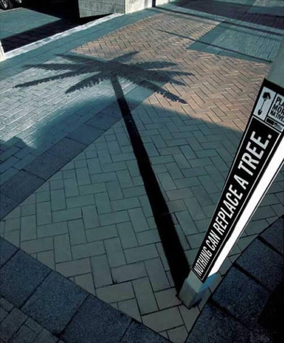 10 самых ярких примеров применения уличной тени в стрит-арте