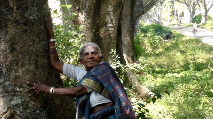 Сейчас Саалумараде 105 лет.