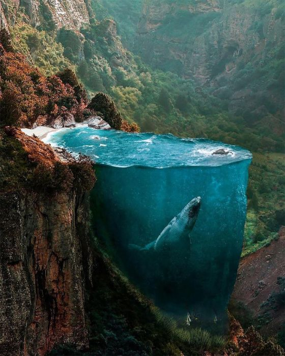 Скалистое побережье. Автор: Huseyin Sahin.